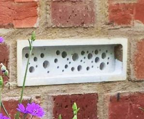 Bee Brick Example, Eco-friendly, Sustainability, Construction